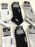 Носки мужские, короткие, спортивные, 12 пар