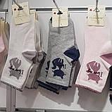Носки демисезонные для девочки с рисунком ТМ DBG, Турция оптом р.5-6 лет, фото 2