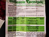 Селективный гербицид для свеклы сахарной кормовой столовой и клубники садовой Виталон Эксперт 100 мл Украина, фото 2