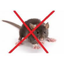 Засоби від мишей і щурів