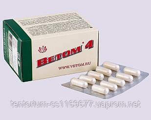 Ветом 4 в блистерах (50 капсул) – чистый и здоровый кишечник, сильный иммунитет