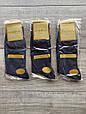 Чоловічі носки шкарпетки стрейчеві Marjinal високі котон антибактеріальний продукт 40-45 6 шт в уп сині, фото 4