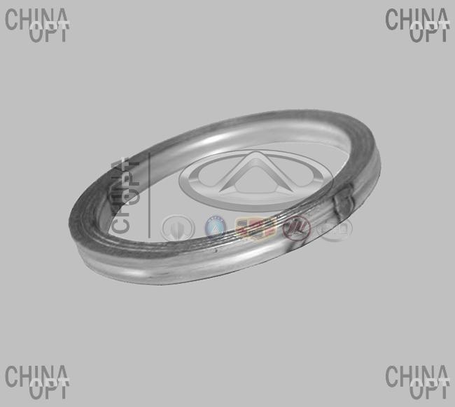 Прокладка приемной трубы (491Q, кольцо)