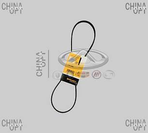Ремінь кондиціонера/гідропідсилювача (S12, 4PK998)