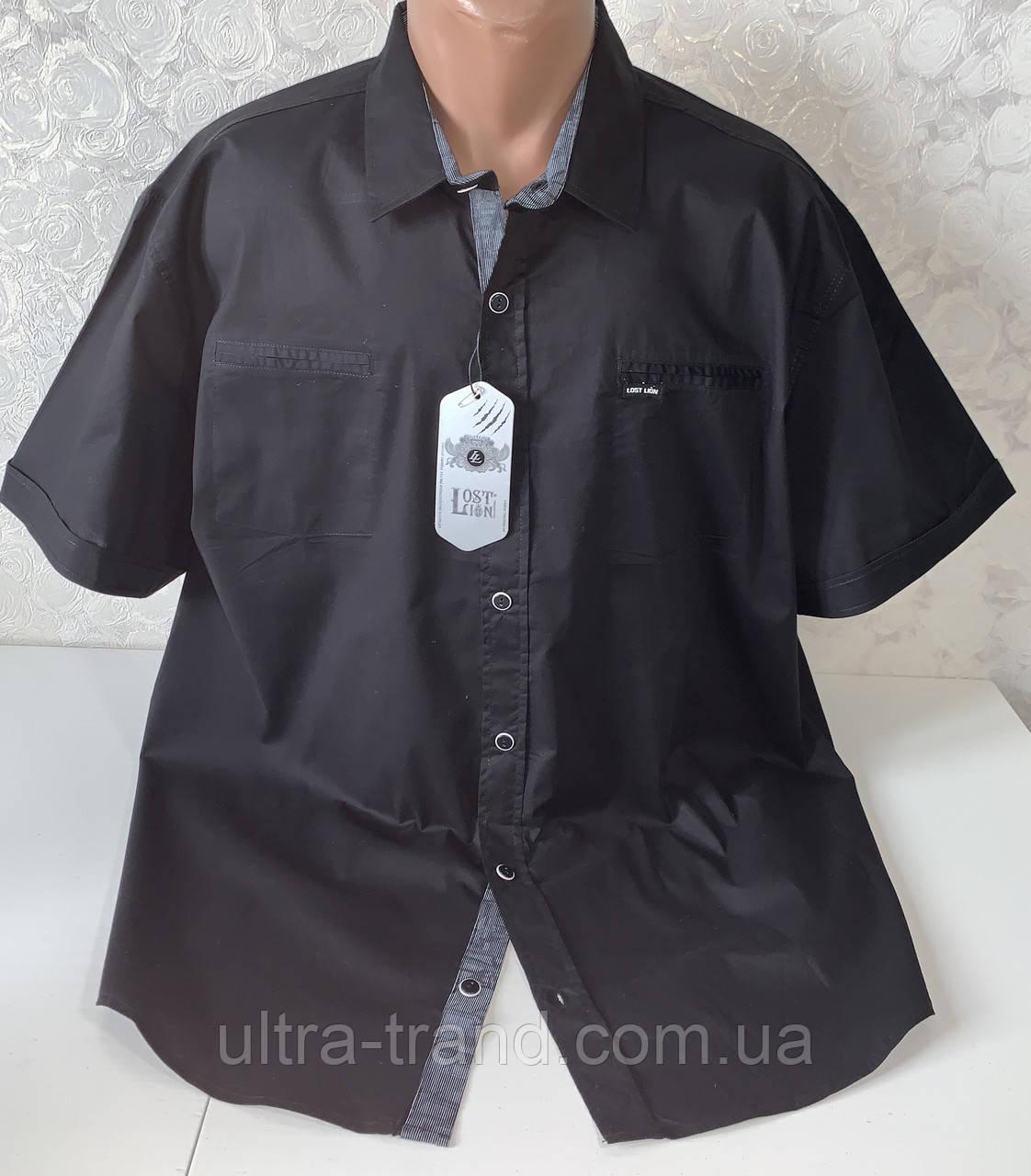 Мужские турецкие рубашки из хлопка чёрного цвета