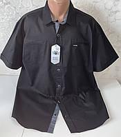 Мужские турецкие рубашки из хлопка чёрного цвета, фото 1