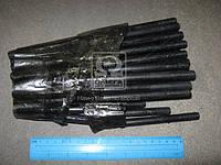 Шпилька головки блока ГАЗ 53,3307 (М 11мм, полный комплект на авто, 36шт) производство Украина 291826-П