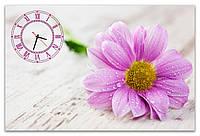 Большие нежные часы на стену в гостинную Розовая гербера 60х90 см