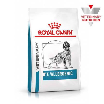 Сухой корм Royal Canin Anallergenic при пищевой аллергии у собак, 3 кг, фото 2