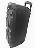 Колонка аккумуляторная с микрофоном Rainberg RB-1010B 200W X-BASS (Bluetooth/USB/FM), фото 6