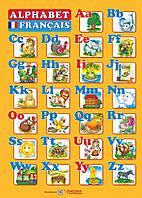 Плакат. Французький алфавіт (А2). Вознюк Л.