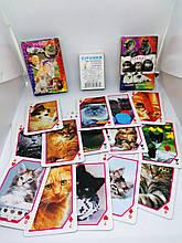 Карты детские кошки 36 карт. Игрушка для наполнения Пиньяты от ПиньятаUA