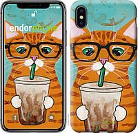 Силиконовый чехол Endorphone на iPhone X Зеленоглазый кот в очках 4054u-1050-26985, КОД: 1712013