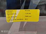 Садовый набор Zipper 1250 Вт, фото 3
