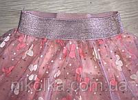 Юбка для девочек оптом, S&D, 1-5 лет, арт. CH-5062, фото 4