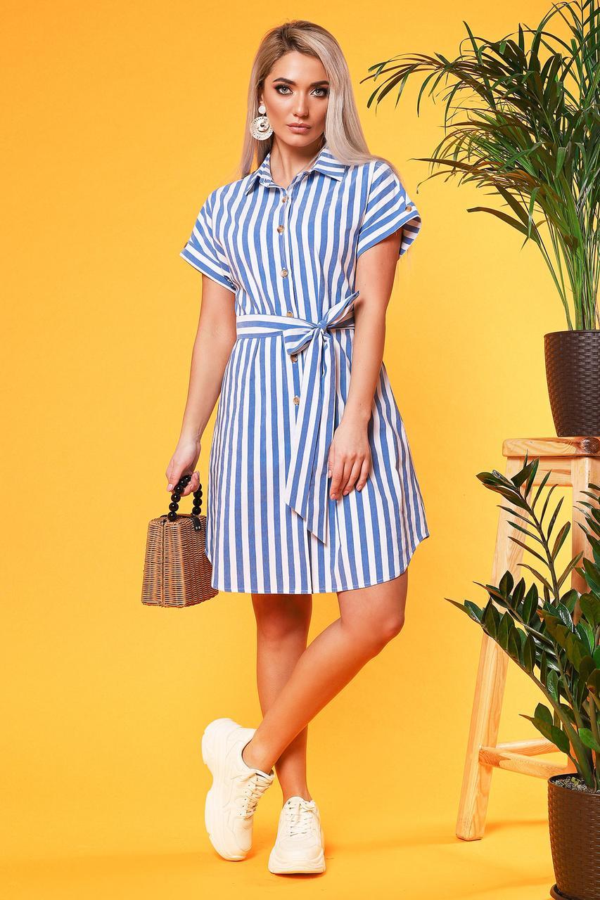 Платье-рубашка в крупную синюю полоску с поясом
