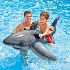 Детский надувной плотик для катания «Белая Акула», Intex 57525, 173 х 107 см