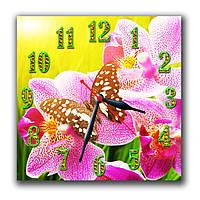Красивые часы на кухню Бабочка в цветах 30х30 см