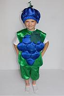 Карнавальний костюм Виноград для дітей 3-6 років, фото 1