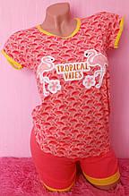 Молодіжна піжама з шортами Night Angel 5396