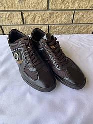 Туфли мужские COMFOOT