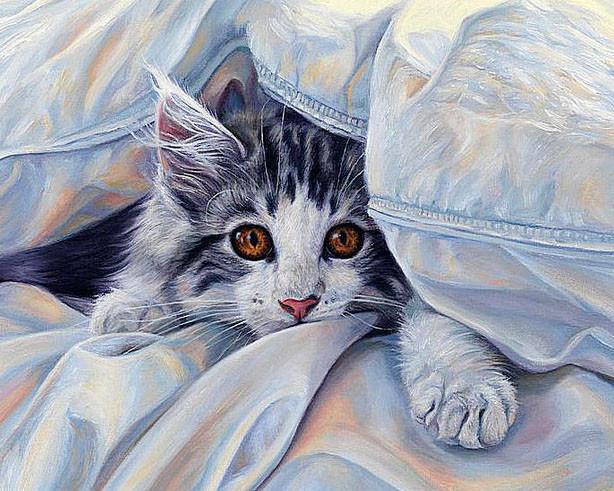 Алмазная мозаика Кошка под одеялом 50x40см DM-143 Полная зашивка. Набор алмазной вышивки