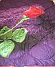 Евро двухспальное шерстяное одеяло Примьер сатин Теп