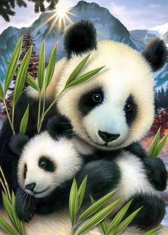Алмазная мозаика Милые панды 40x50см DM-105 Полная зашивка. Набор алмазной вышивки
