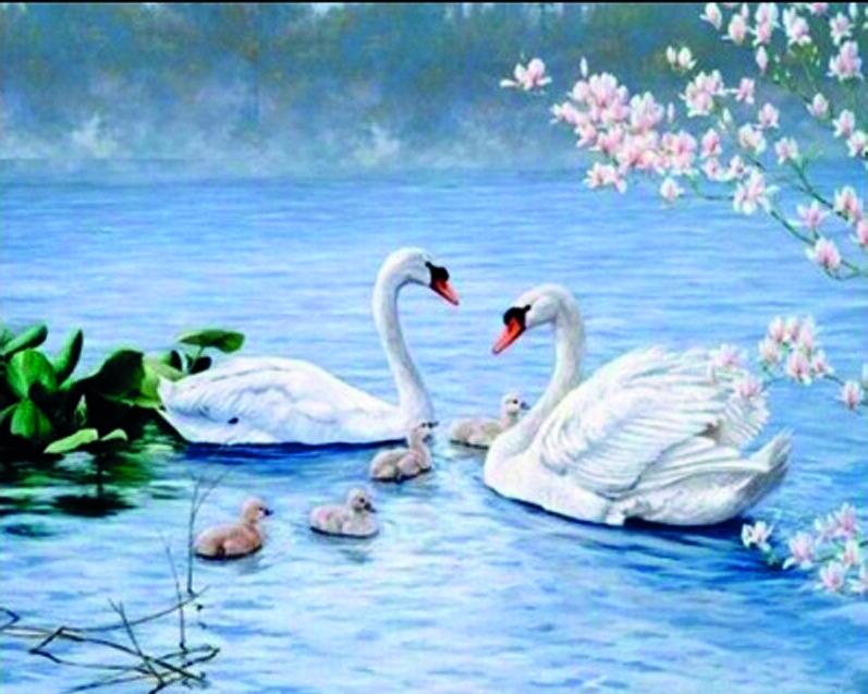 Алмазная мозаика Лебединая семья DM-297 50х40см Полная зашивка. Набор алмазной вышивки. Птицы, животные
