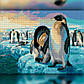 Алмазная мозаика Пингвины 30x40 TWD20021 The Wortex Diamonds Полная зашивка, фото 2