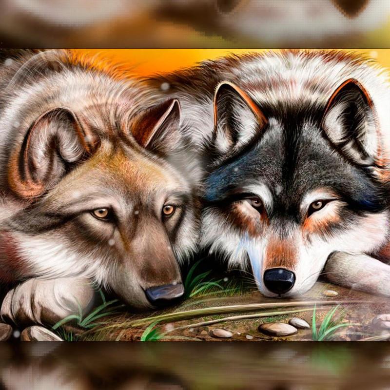Алмазная мозаика Волк с Волчицей 30x40 TWD20014 The Wortex Diamonds Полная зашивка