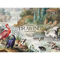 """Альбом для малювання склейка 20арк. A5+ 150гр/м2 """"Muse"""" Drawing PB-GB-020-050/Школярик"""