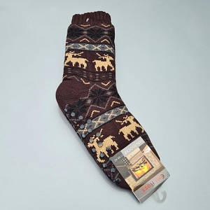 Вовняні шкарпетки чоловічі