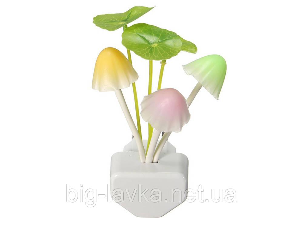 LED-ночник Гриб Мультицвет  Разноцветный