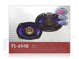 Автодинамики овал 6x9 120Вт 6шт TS-6948