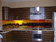 Фартук для кухни из стекла с фотоизображением