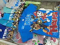 футболка для мальчика Щенячий патруль р.92-128