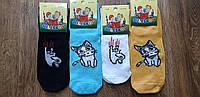 """Дитячі стрейчеві шкарпетки """"MiLeSKoV"""" Запоріжжя,26-30 та 31-35 Котики"""