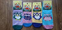 """Дитячі стрейчеві шкарпетки """"MiLeSKoV"""" Запоріжжя,26-30 та 31-35 Совушки"""
