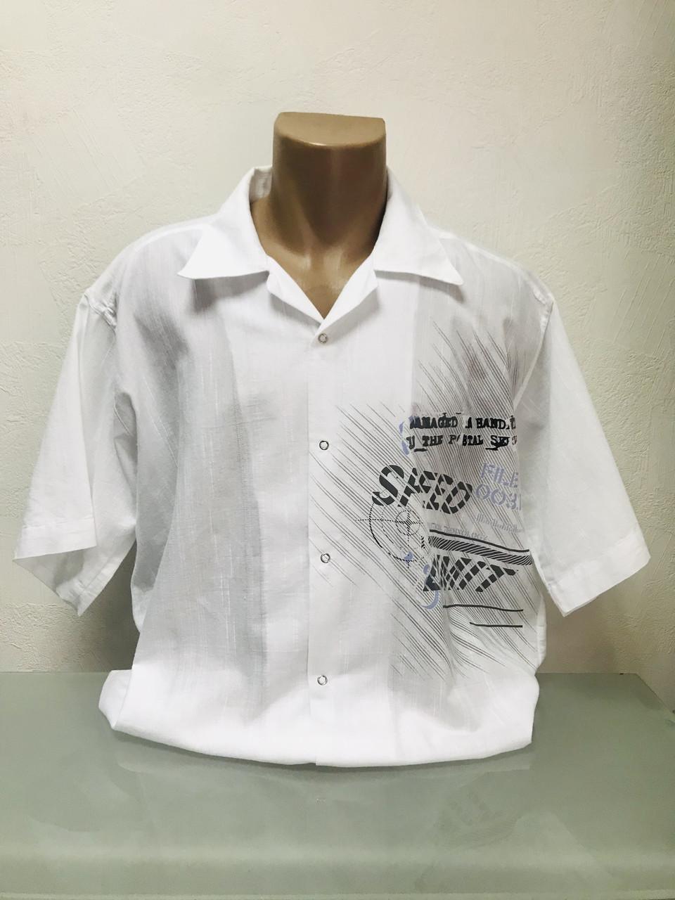 Шведка тенниска рубашка с коротким рукавом мужская белая лен  Fill Pucci РАЗМЕР+