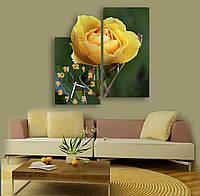 Желто зеленые Фигурные Часы картина модульная Желтая роза с бутоном 30х60 30х60 см