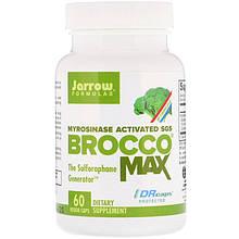 Jarrow Formulas, Экстракт семян брокколи BroccoMax, активированный мирозиназой SGS, 60 растительных капсул
