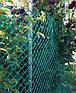 Сетка пластиковая садовая 90x90мм рулон 1м x 20м, фото 4