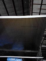 Поликарбонат сотовый 6мм бронзовый 2.1х6м, гарантия 10 лет, фото 3