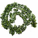 Лиана плющ  зеленый 200см, фото 2