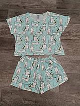 Трикотажная женская пижама футболка с шортами /Кошечки/ разные цвета, S-L, фото 3