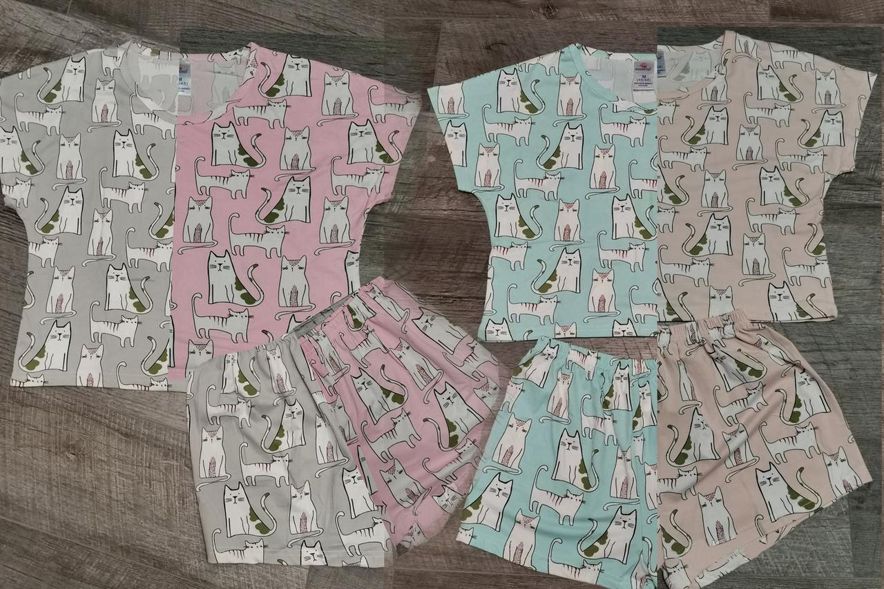 Трикотажная женская пижама футболка с шортами /Кошечки/ разные цвета, S-L