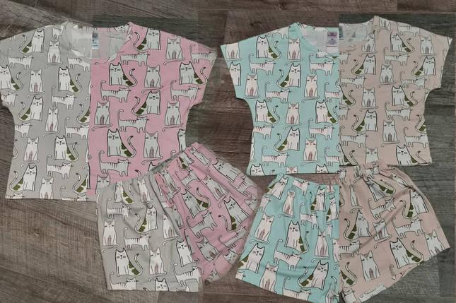 Трикотажная женская пижама футболка с шортами /Кошечки/ разные цвета, S-L, фото 2