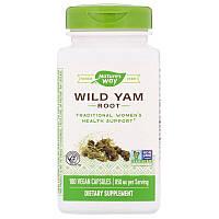 Nature's Way, Wild Yam Root, Корень дикого ямса, 850 мг, 180 веганских капсул