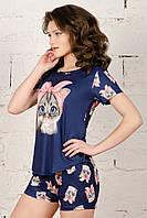 Трикотажная женская пижама футболка с шортами /Котик/ синий, S-L